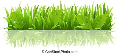 trawa, liście