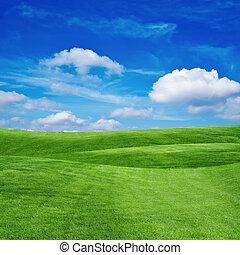 trawa pole, z, pochmurne niebo