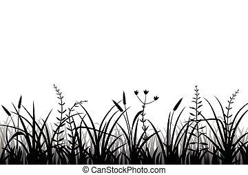 trawa, sylwetka, łąka