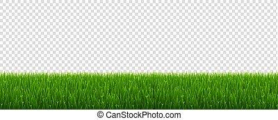 trawa, zielony, przeźroczysty, tło