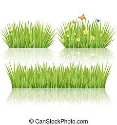 trawa, zielony, wektor