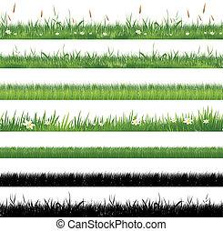 trawa, zielony, zbiór