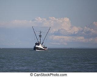 trawler, südosten, gewerblich, alaska, fischerei