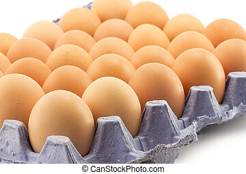tray of eggs