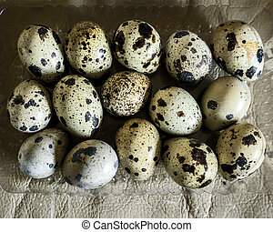 Tray of quail eggs photographed from above on a beige background