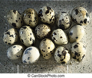 Tray of quail eggs photographed from above on a stone background