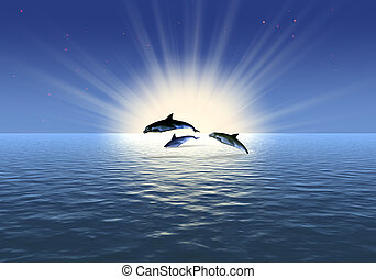 tre, delfin