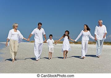 tre generationer, i, familie gå, hånd ind hånd, på, strand