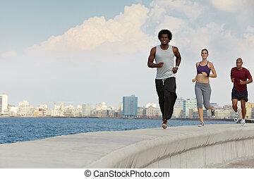 tre kamrater, gör, sport, aktiviteter, nära, den, hav