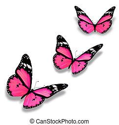 tre, lyserød, sommerfugle, isoleret, på hvide