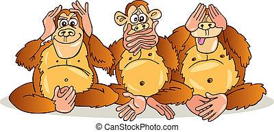 tre, scimmie