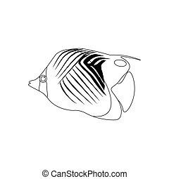 Butterflyfish Stock Illustrations 316 Butterflyfish Clip Art Images