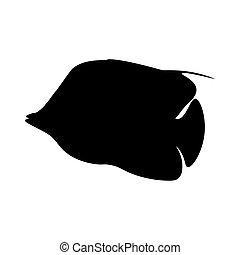 Treadfin Butterflyfish silhouette