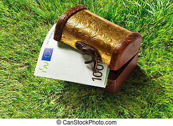 Treasure chest with euro banknote