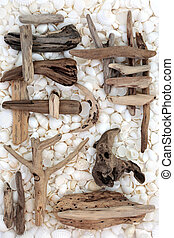 Treasures of the Sea - Driftwood and white seashells forming...
