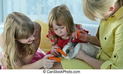 Treat - Young beautiful woman holding a rabbit while little...