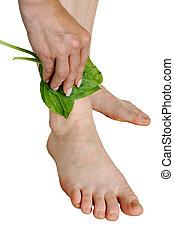 Treatment by a leaf