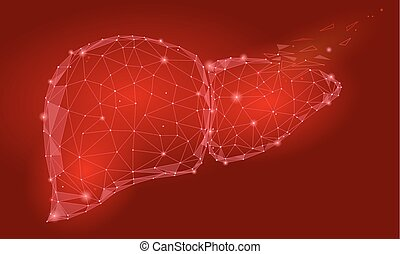 Treatment regeneration decay Human Liver Internal Organ Triangle Low Poly. Connected dots red color technology 3d model medicine healthy body part vector illustration art