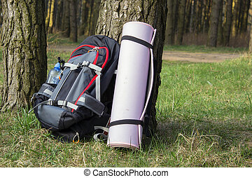 trecken, schwer , rucksack, in, wald, mit, grün, gläser, water.