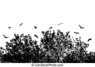 Tree and branches with flying birds