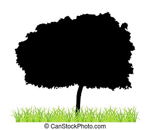 Tree And Grass