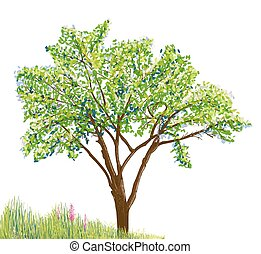 tree and grass with flowers drawing on white