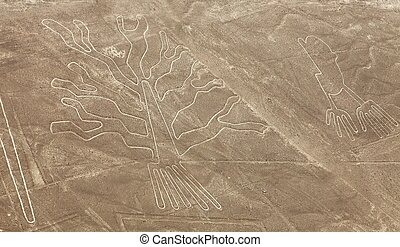 Tree and hands geoglyphs, Nazca or Nasca mysterious lines and geoglyphs aerial view, landmark in Peru