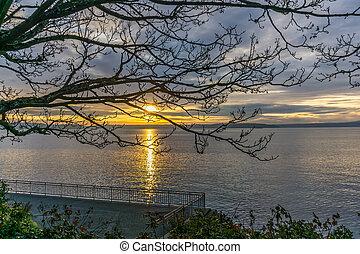 Tree And Sunset 3