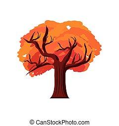 tree autumn plant