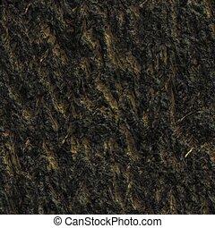 Tree bark. seamless texture.