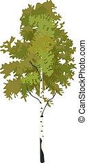 Tree birch in springtime clip art