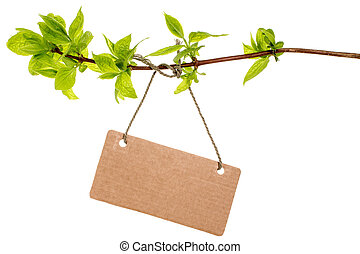 Tree branch with blank tag, isolated
