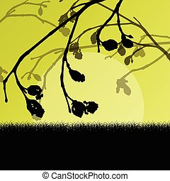 Tree branch with buds spring vector background landscape ...