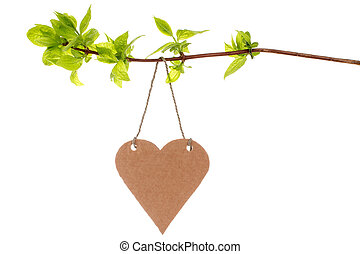 Tree branch with heart shaped tag