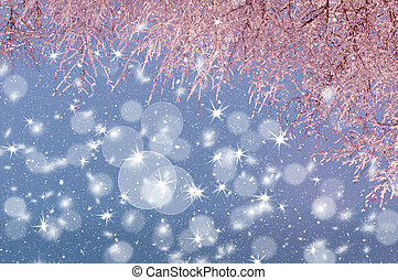 tree branches in hoarfrost illuminated by pink light against the sky