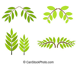Tree branches with green leaves collection isolated. Vector...