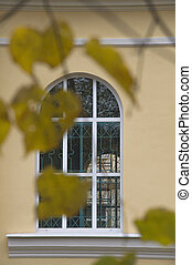 Tree branches with yellow autumn leaves on the background of a vintage beautiful window