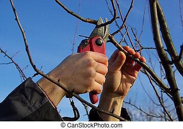 tree cutting 16