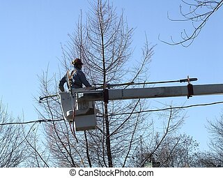 tree cuttting