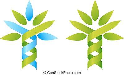 Tree DNA concept
