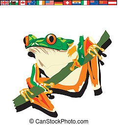 colorful tree frog on branch
