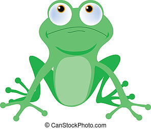 Tree Frog - Green tree frog with big buggy eyes