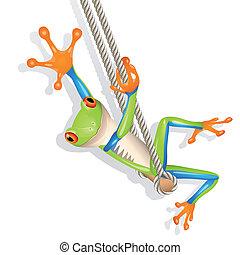 Tree frog on a swing - Little tree frog on a swing