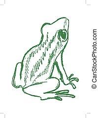 tree frog, tropical animal - vector, sketch, hand drawn...