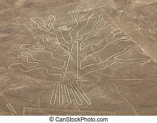 Tree geoglyph, Nazca mysterious lines and geoglyphs aerial view, landmark in Peru