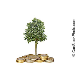 tree growing from coins