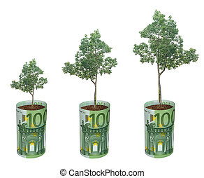Tree growing from euro banknots