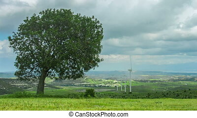 """Tree growing on wind farm. Green energy. Environment protection, global warming"""