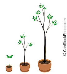 Tree Growth Vector