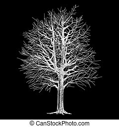 tree hand - drawn
